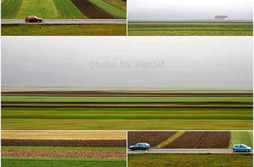 Lenpljenka Boštanjsko poljemm - Kopija