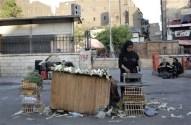 Egyptian woman sells corncobs