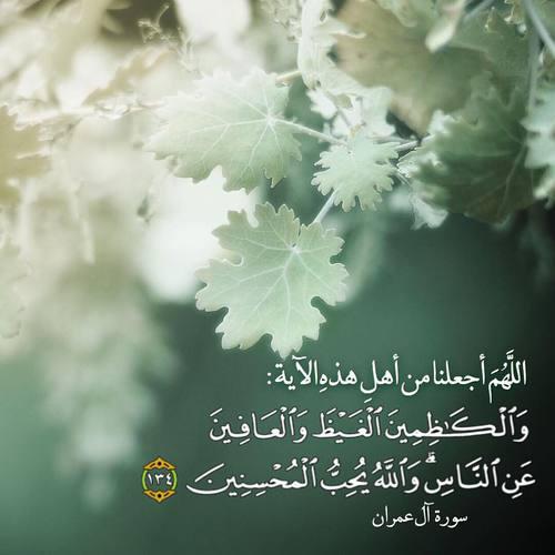 5 liens d'annonces pour le mariage halal inchallah.