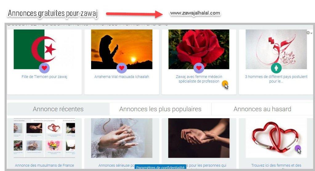 Comment publier ou contacter l'auteur d'une annonce