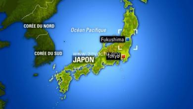 Photo of Un puissant séisme de magnitude 7.3 a touché le Japon. Une alerte au tsunami déclenchée