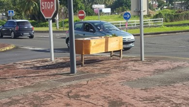 Photo of Insolite : Un cercueil retrouvé sur le bord de la route au Lamentin à Place d'Armes