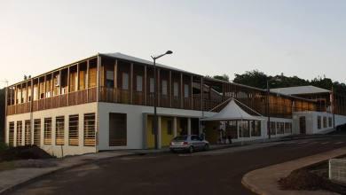 Photo of Invasion d'abeilles à l'école maternelle de Moulin à Vent au Robert