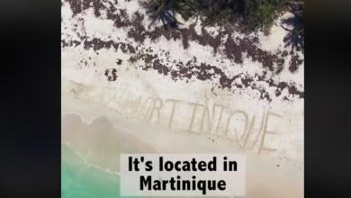 Photo of Erik Conover un youtubeur très connu promotionne le Domaine des Bulles en Martinique
