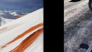 Photo of De la neige au Sahara et des routes qui fondent en Australie à cause d'une extrême chaleur