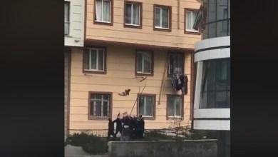 Photo of Un enfant laissé sans surveillance se retrouve à la fenêtre et est sauvé in extremis (Vidéo)