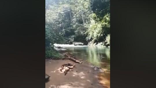 En rivière aux Antilles : restez toujours sur vos gardes, la preuve en vidéo