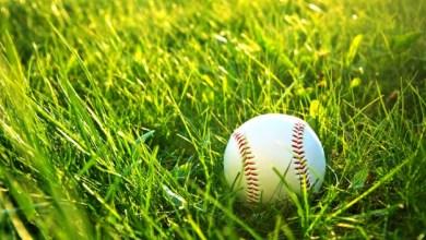 Photo of Baseball : touchée par une balle en pleine tête, une fan décède par la suite