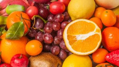 """Photo of """"Bientôt, ce sera la saison des fruits, gardez les noyaux afin de reverdir ce monde"""""""