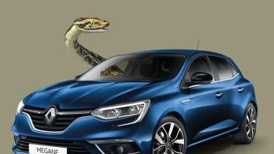 """Photo of """"Les pythons du…Lamentin"""" Martinique Automobile surf sur le buzz"""