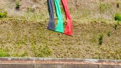 """Photo of Les couleurs """"rouge-vert-noir"""" visibles aux abords de l'autoroute"""