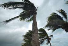 Photo de Onde tropicale active : de fortes rafales de vent à plus de 100 km/h sur la façade atlantique enregistrées ce mercredi soir
