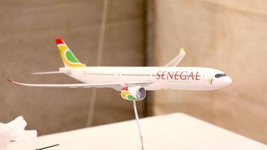 Photo of Bientôt une ligne directe entre la Martinique et le Sénégal avec Fly Air Sénégal ?