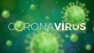 Photo of Coronavirus : un quatrième décès lié au coronavirus enregistré en Martinique. 50 personnes guéries