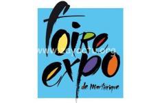Photo de Covid-19 : la Foire Expo annulée, une décision incompréhensible pour les internautes