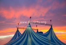 Photo de Les internautes pointent du doigt l'arrivée d'un cirque en Martinique