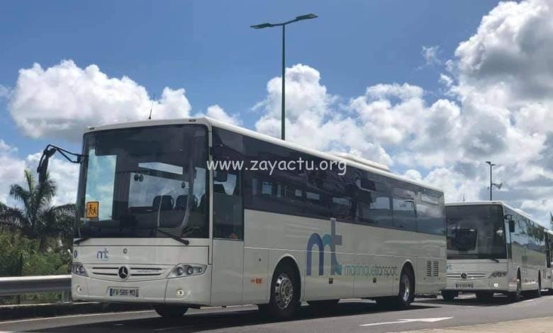 Des bus de Martinique Transport.