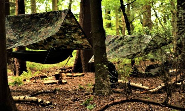 Преживљавање у природи – Изградња средњовековне куће