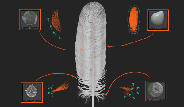 ZBrush Feathers Tutorial | ZBrush Guides