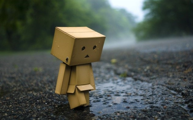 danbo-hd-wallpaper