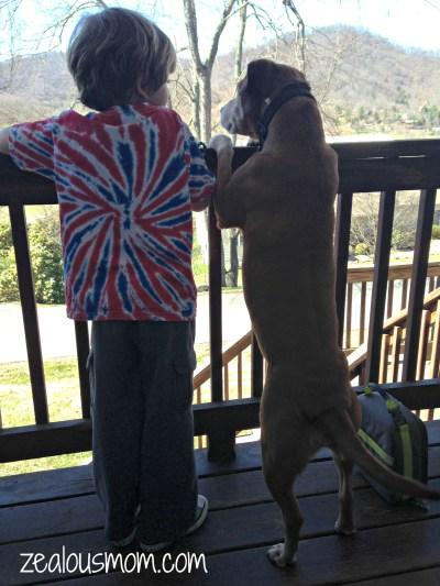 Friday 5: Solitary Mommying, Introspection and Sweet Boys @zealousmom.com #linkup