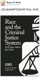 Deciding-Race and the Criminal Justice System