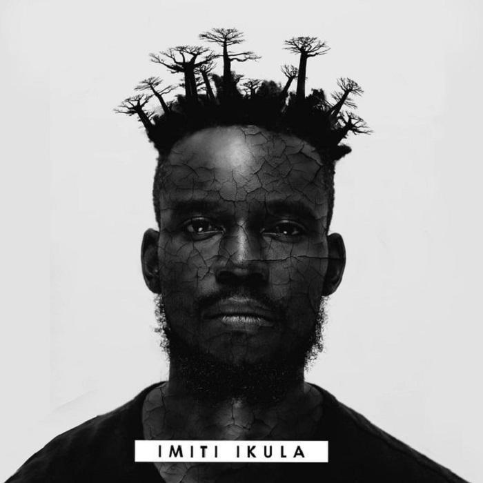Imiti Ikula by K.R.Y.T.I.C Album Review | Zed Hype Mag