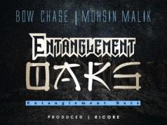 "Bow Chase x Mohsin Malik – ""Entanglement Bars"""