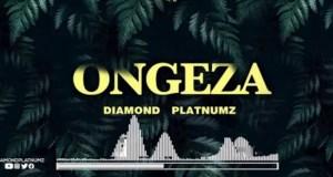 Diamond Platnumz - Ongeza Download