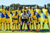 napsa stars players