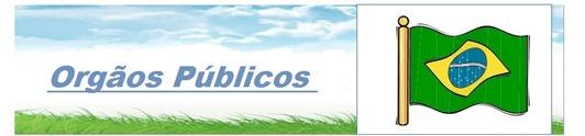 orgao Publico no Brasil