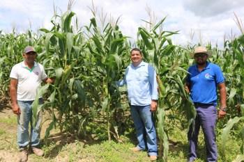 Governo de Piçarra beneficia agricultores rurais com gradeação do solo