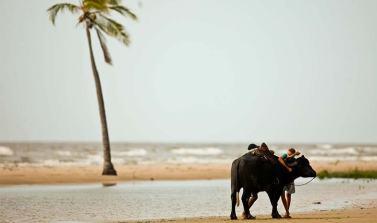 Mapa do Turismo Brasileiro mostra crescimento de 11 municípios paraenses