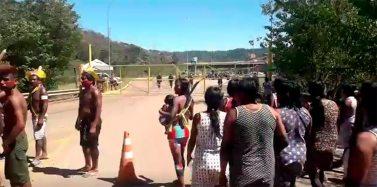 Índios Kayapó desbloqueiam acesso ao Projeto Onça Puma