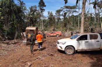"""A 12ª fase da Operação """"Amazônia Viva"""" embarga áreas desmatadas, apreende madeira e maquinários"""