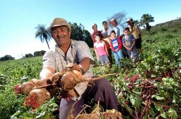 Câmara aprova dois projetos que beneficiam produtores rurais