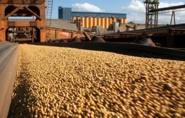 Exportações do Pará cravam 2,19 bilhões de dólares no melhor maio da história