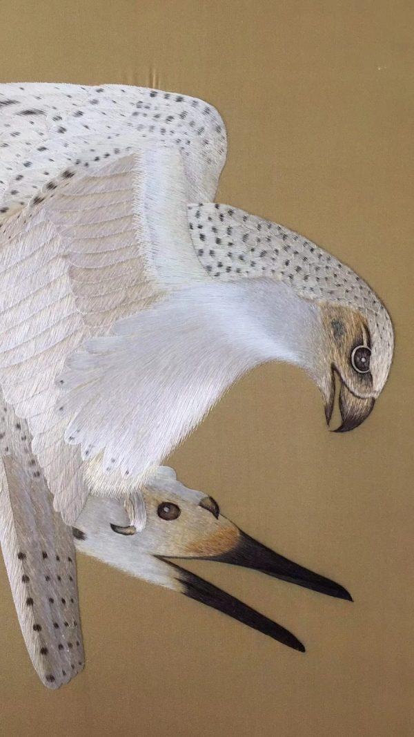 Eagle hits swan