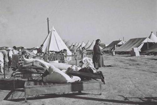 מחנה פליטים יהודיים שנמלטו מאזור הגבול עם יפו