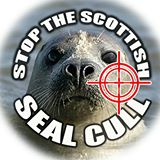 stop-the-scottish-seal-scull