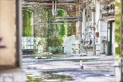 Dieter Rüge Lost Places XiX- Köln