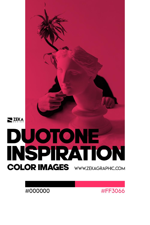 Graphic Design Color Duotone Inspiration 01