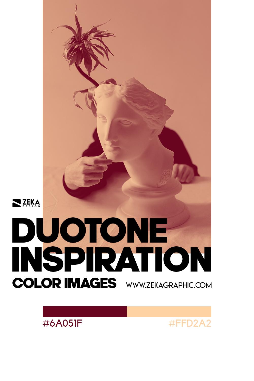 Graphic Design Color Duotone Inspiration 03