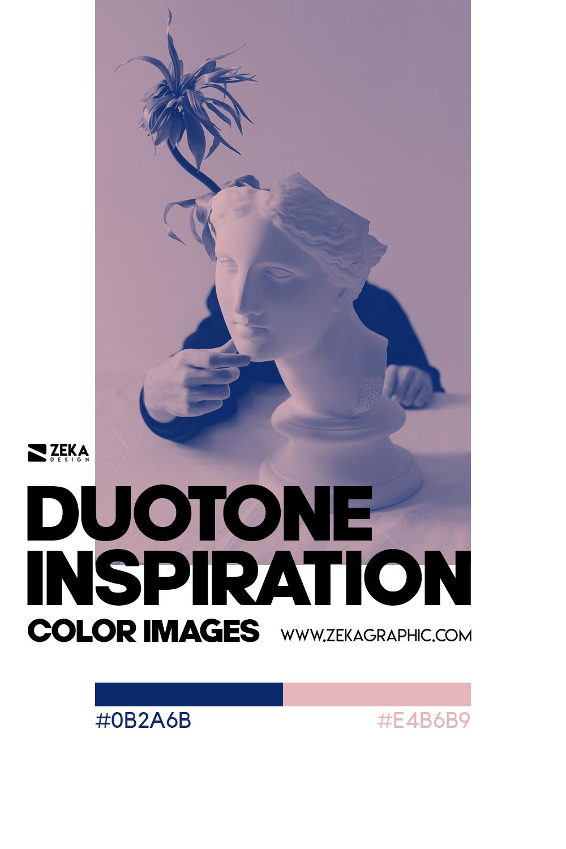 Graphic Design Color Duotone Inspiration 07
