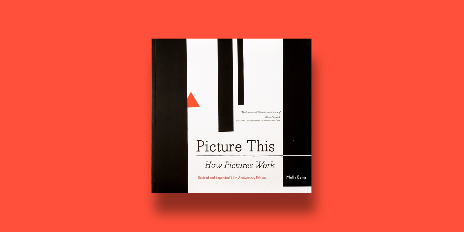 Picture This How Picture Work Best Illustration Books