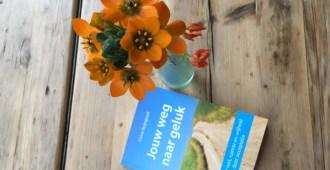 zelfhulpboeken-acceptatie-weg-naar-geluk