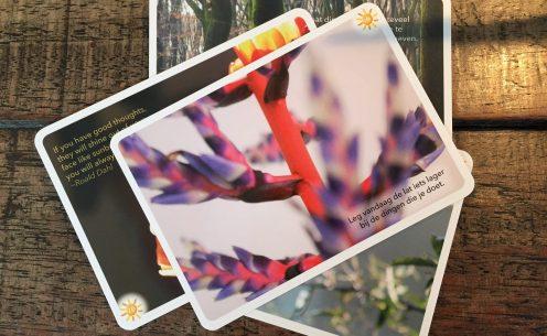 zelfhulpboeken-doosje-zonneschijn1