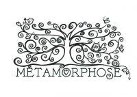 metamorphose.jpeg