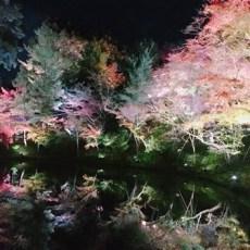 京都の秋の小吉旅(笑)