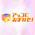 TBS「アッコにおまかせ!」シニア婚活パーティー取材していただきました!(3/11放送)